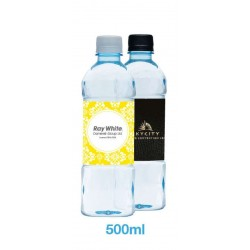 Bottled Spring Water 500ml